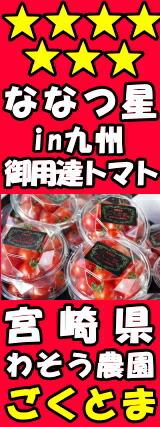 宮崎わそう農園ごくとまトマト