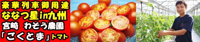 宮崎ごくとまトマト