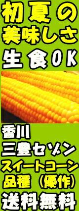 香川三豊ファーム優作