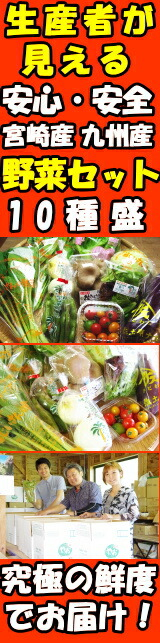 九州野菜セットはこちら!