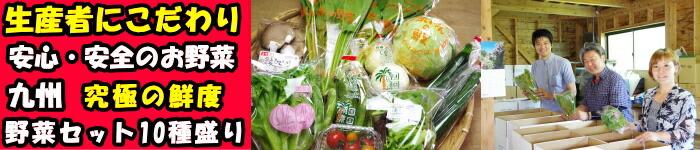 宮崎野菜セットはこちらです!