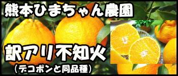 熊本ひまちゃん農園不知火