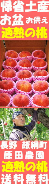 長野原田適熟の桃バナー