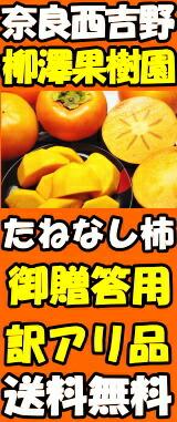 奈良種なし柿はこちら!