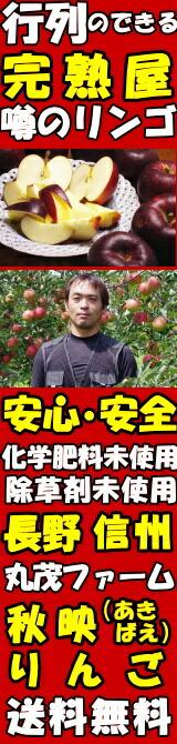 長野丸茂ファーム秋映りんご