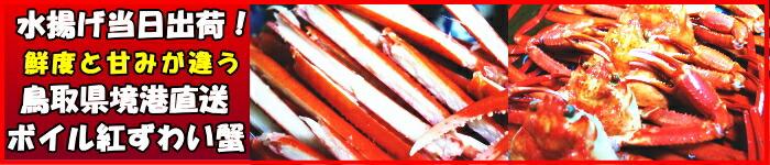 鳥取境港直送紅ずわい蟹はこちら