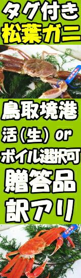 鳥取境港直送松葉ガニはこちら