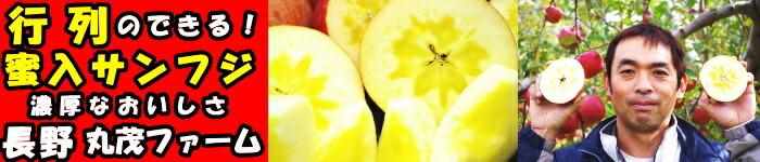 長野丸茂ファーム蜜入サンフジりんご