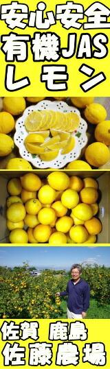 佐賀佐藤農場有機レモン