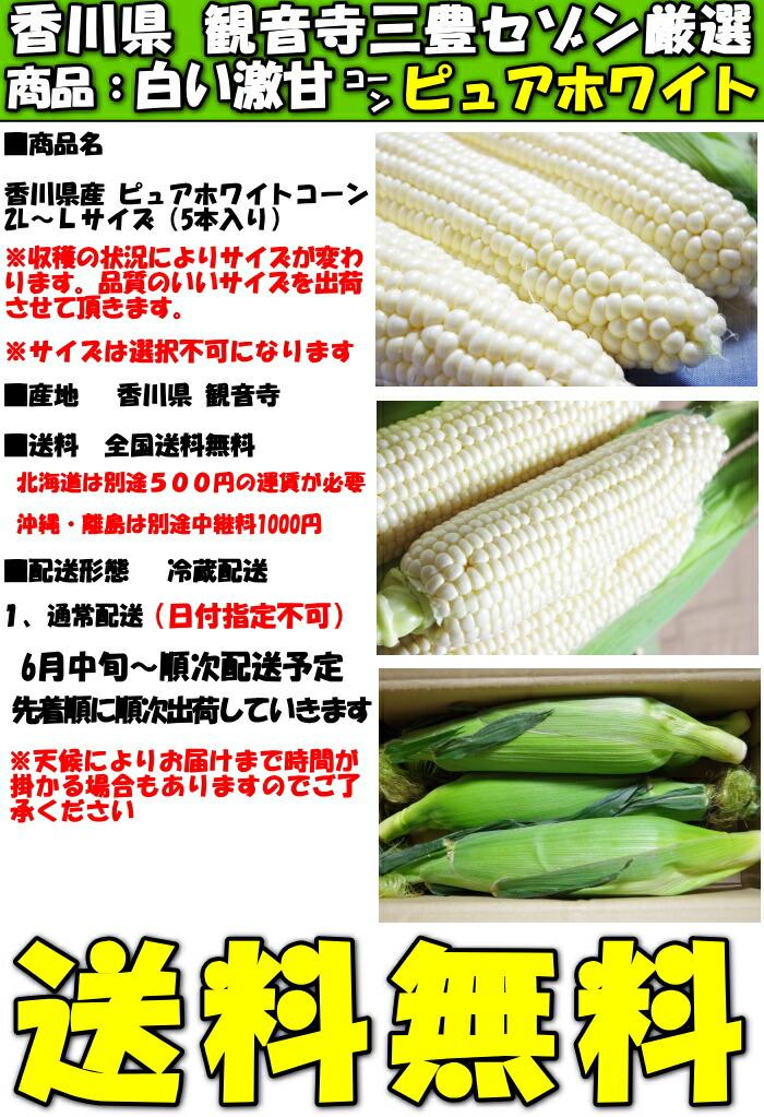 香川とうもろこしピュアホワイト5本スペック