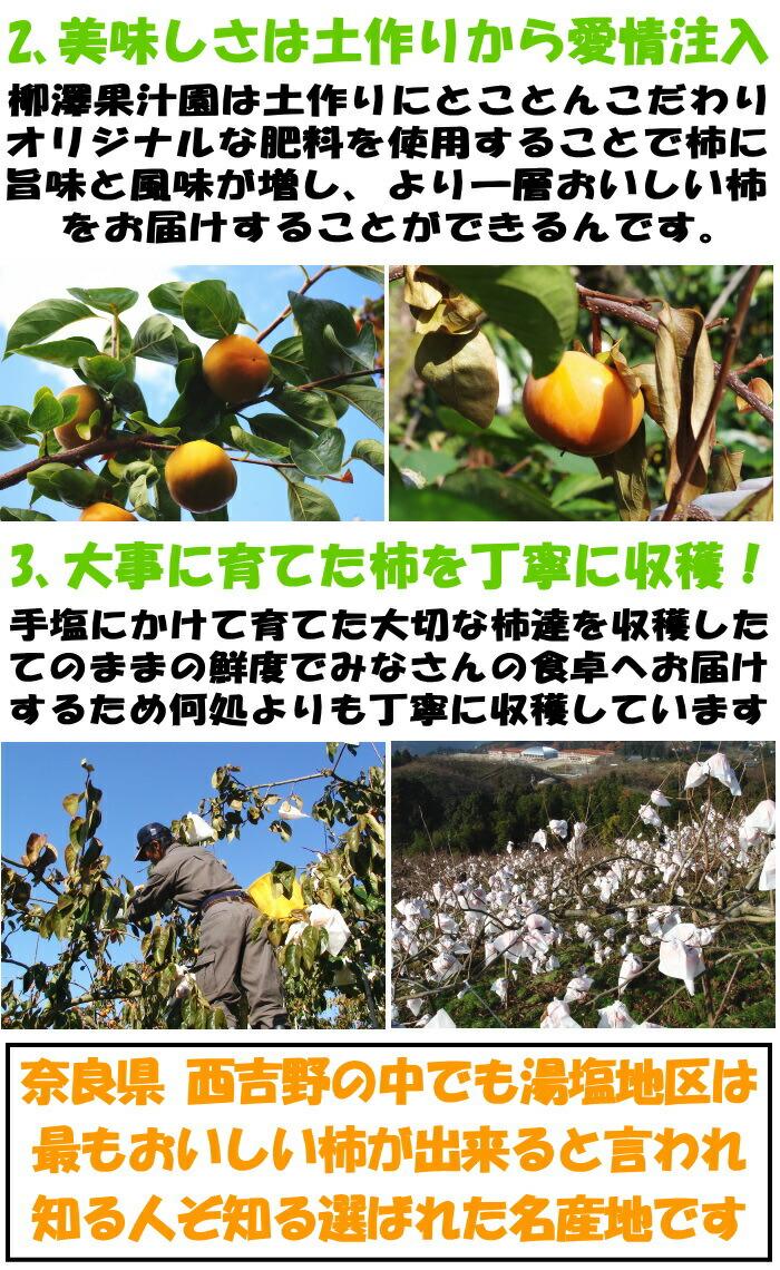 奈良柳澤果樹園アピール2