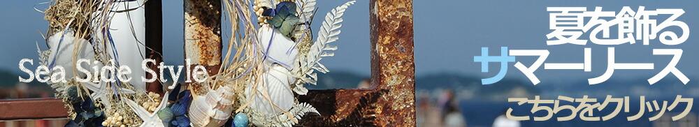 シーサイドスタイル豊富なサマーリース
