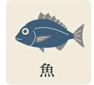 魚カテゴリー