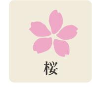 桜カテゴリー