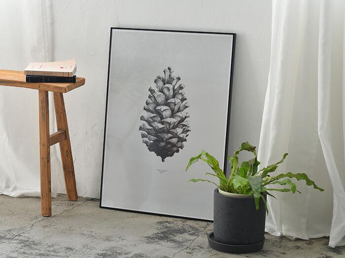 Paper Collective Pine Cone ポスター