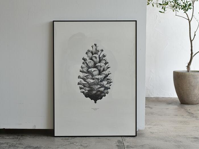 Paper Collective Pine Cone 50×70cm