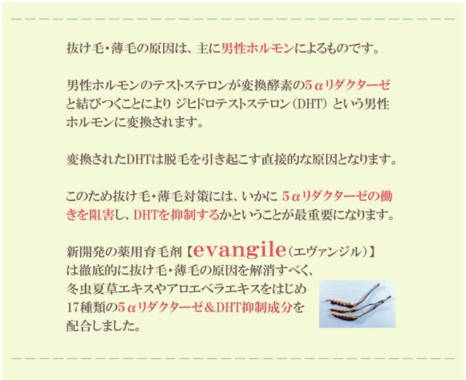 薬用育毛剤 エヴァンジル 15 5αリダクターゼ&DHT抑制成分 冬虫夏草 アロエ
