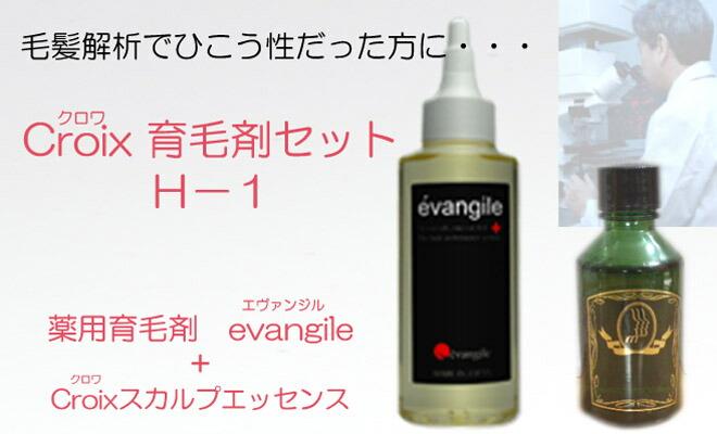 Croxi育毛剤セット エヴァンジル+Croixスカルプエッセンス