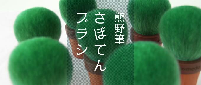 熊野筆さぼてんブラシ