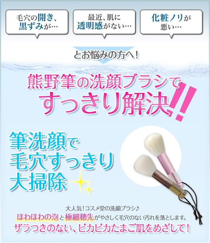 筆洗顔で毛穴すっきり大掃除/大人気!コスメ堂の洗顔ブラシ♪ほわほわの泡と極細穂先がやさしく毛穴のない汚れを落とします。