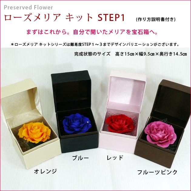 ローズメリア キット STEP1
