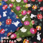 雪ウサギと椿