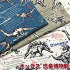 オックス 恐竜博物館