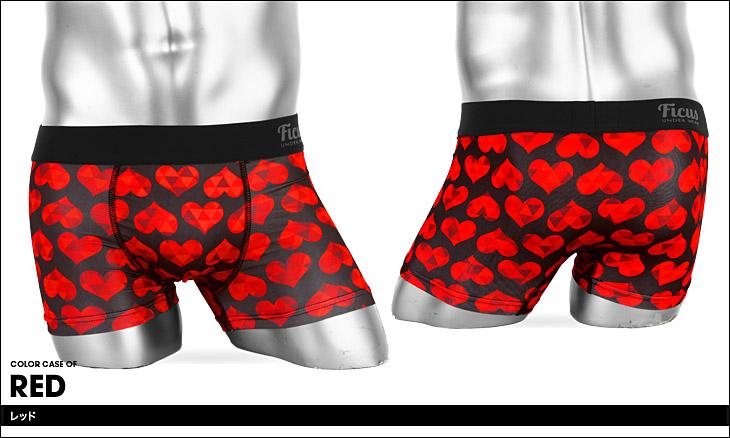 FICUS フィークス Heart Scale Pattern ボクサーパンツ カラー画像