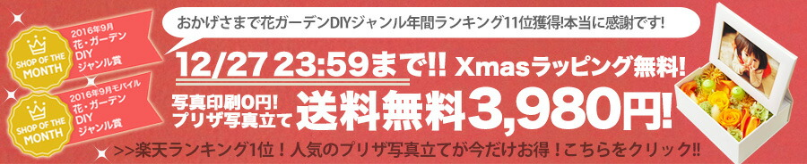 SOM記念 3980円