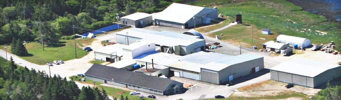 栄養補助食品原料の工場で魚だけを加工する世界唯一のコラーゲンペプチド工場
