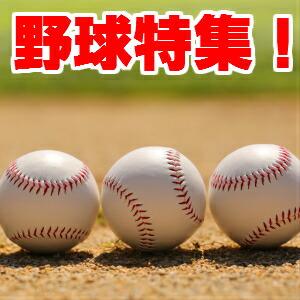 野球特集カフスボタン