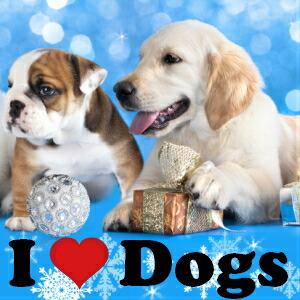 犬モチーフカフスボタン特集