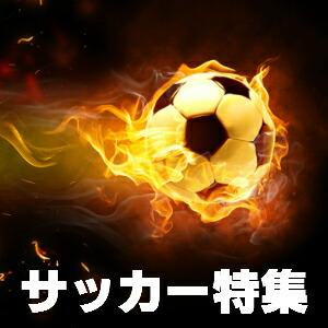 サッカーカフスボタン