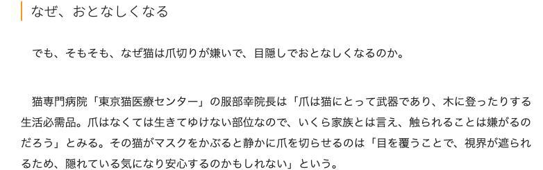東京猫医療センター院長