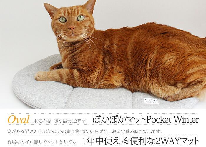 猫のお留守番も安心・暖かいマット