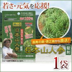 日本山人参 錠剤1袋