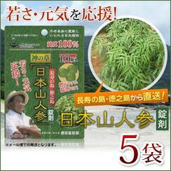 日本山人参 錠剤5袋