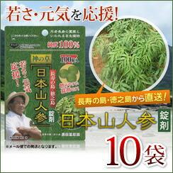 日本山人参 錠剤10袋