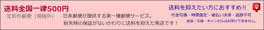 日本郵便 定形外郵便物(規格外)対応商品一覧