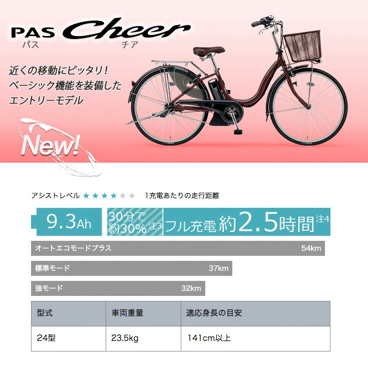 pas,pa24ch,2020,PAS,PA24CH,パス,チア,Cheer,cheer,ナチュラM後継車