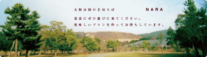 奈良のまほろば大仏プリン