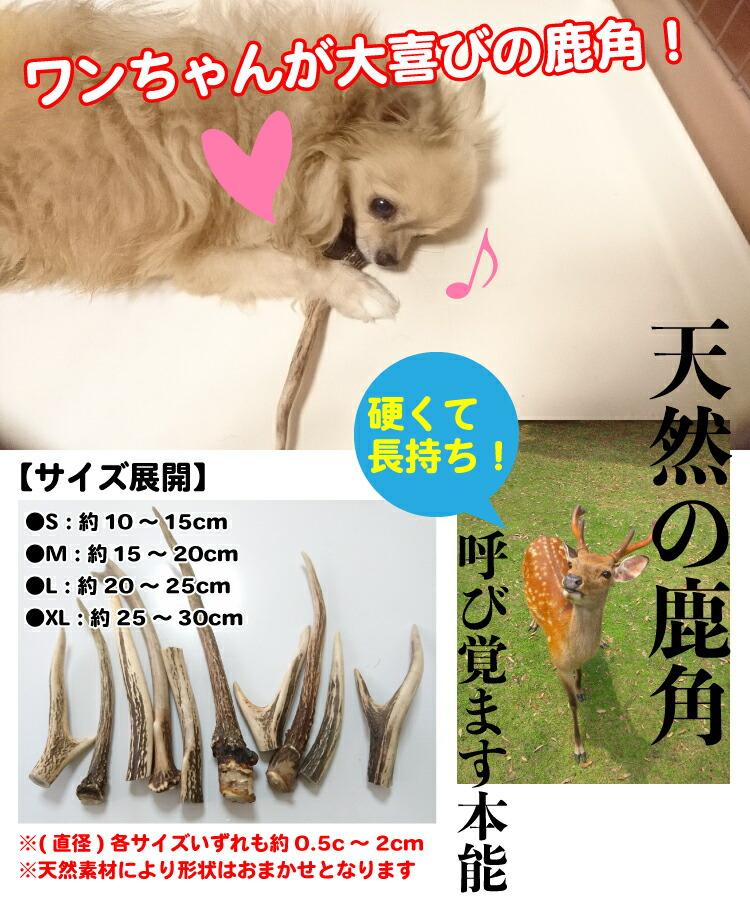 鹿角 犬 おもちゃ