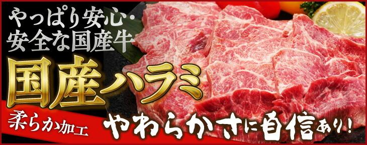 送料無料!国産牛旨味ハラミ焼肉1㎏【250g×4】4人~5人前