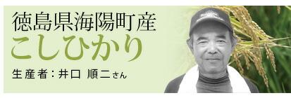 石本(コシ)