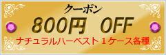 クーポン800円OFF_3