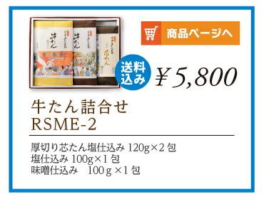 詰合せRSME-2