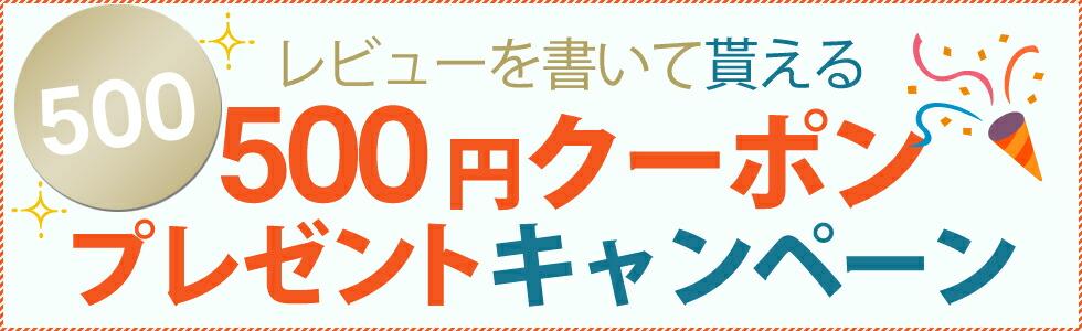 レビューを書いて500円クーポンをゲット