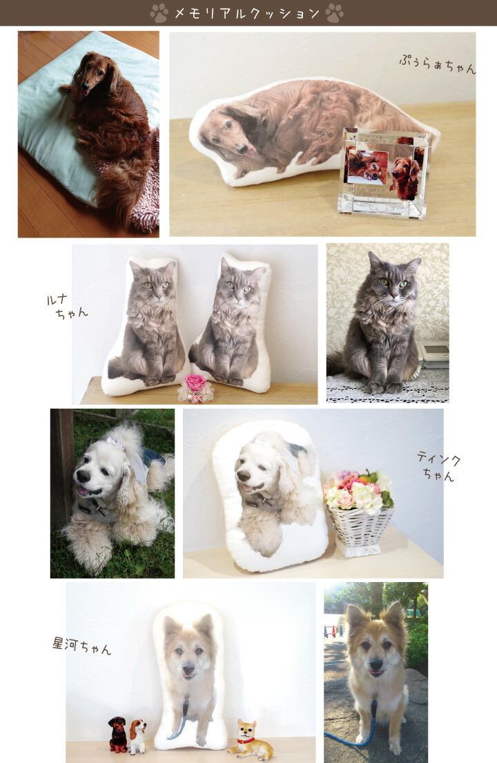 ペットの写真で作るクッション