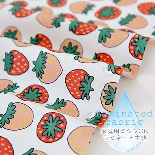 Fruit - strawberry