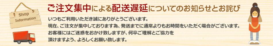 https://image.rakuten.co.jp/dejikura/cabinet/banner/haisouinfo_1.jpg